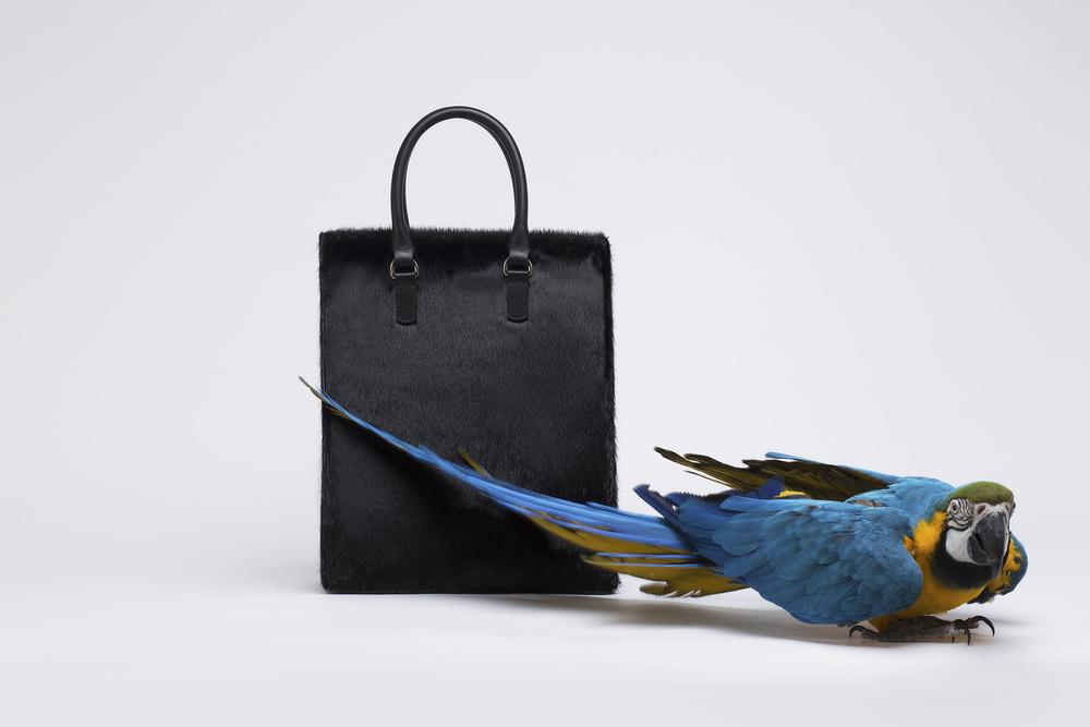 BIRDS+&+BAGS+03-416