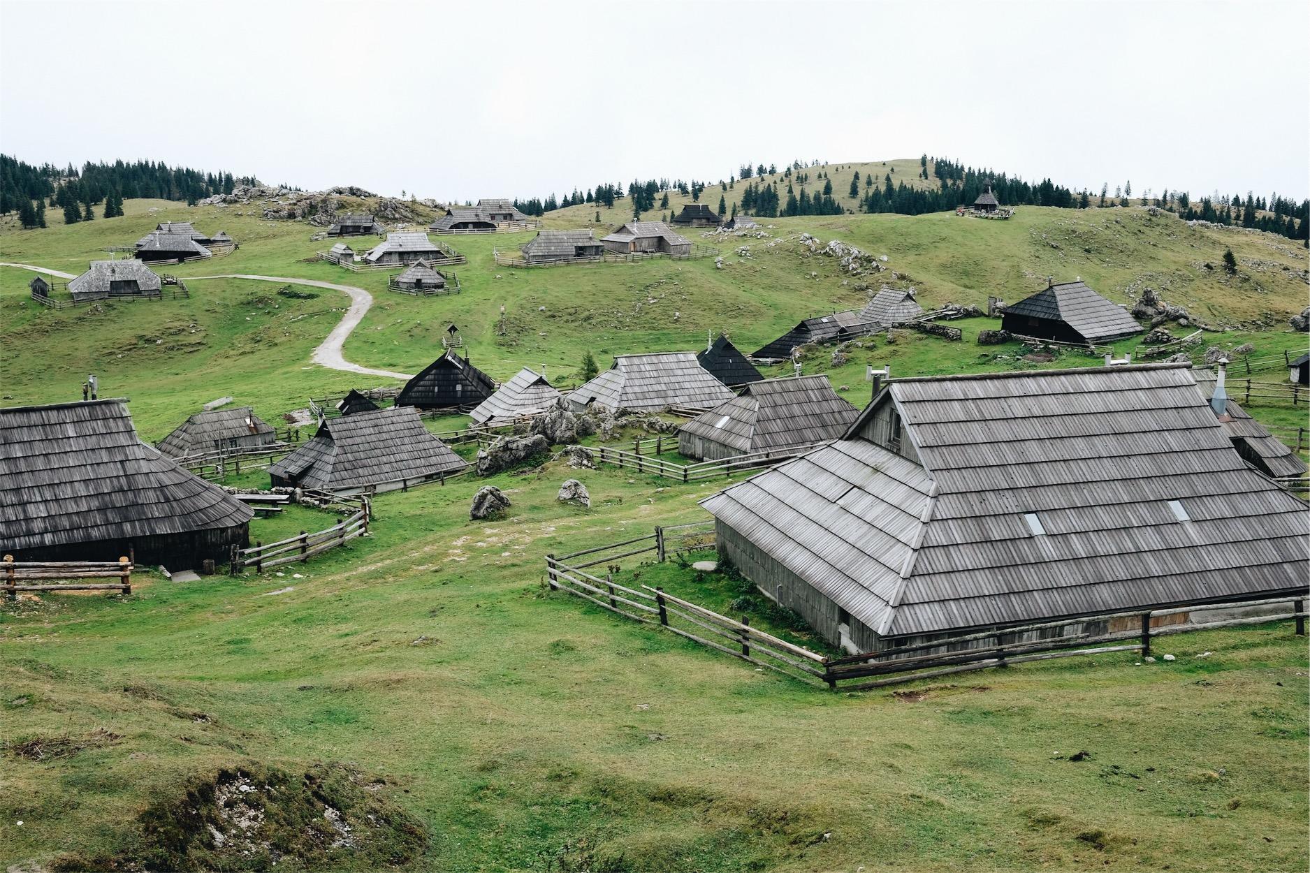 Velika Planina Ana Bacinger